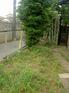 PICT7463.JPG